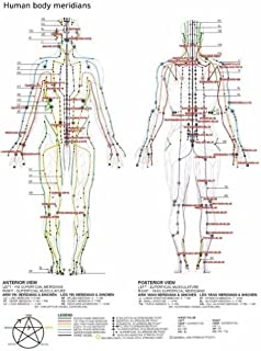 Acupuncture Poster 24x36
