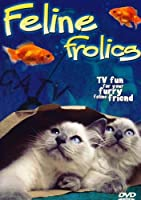 Feline Frolics [DVD]