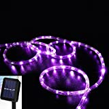 Solar Rope Lights, DINOWIN 39ft/12M 100LED Waterproof Copper Tube Wire String Lights for Garden,Yard, Path, Fence, Stairs, Backyard, Patio Decorative (Purple)
