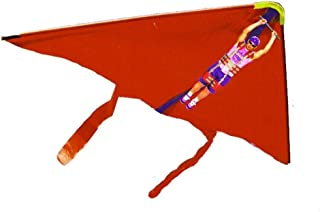 Best small hang gliders Reviews