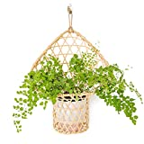Hanging Rattan Basket, Rustic Wall Planters for Indoor Plants, Beautiful Wall Decor for Any Modern Home to Display Succulent Plant or a Vase of Flowers. Planter Hanger by Indoor Gardener.