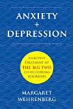 Image of Anxiety + Depression: Effective Treatment of the Big Two Co-Occurring Disorders (Norton Professional Books (Hardcover))