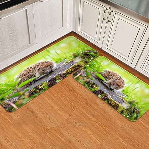 BCVHGD 2 STK. Küchenmatten-Set,Netter Igel des Winterschlafes auf Stumpf wäh, Rutschfester Matten-Teppich für waschbare, haltbare Küchenfußmatten-Läuferteppiche