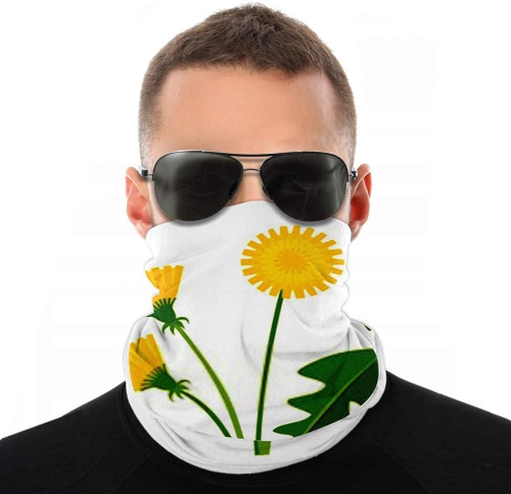 Headbands For Men Women Neck Gaiter, Face Mask, Headband, Scarf Cartoon Bright Dandelion Flower Leaves Isolated Turban Multi Scarf Double Sided Print Sports Headbands For Women For Sport Outdoor