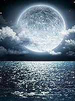 DIYペイントバイナンバーキット 大人用 - 初心者向けキャンバスに番号キットでペイントする | ホームウォールデコ | プレプリントアートクオリティキャンバス 20インチ×16インチ ブラシ3個 とアクリルペイント - 月明かりに照らされた海,40×50cm(フレームなし)