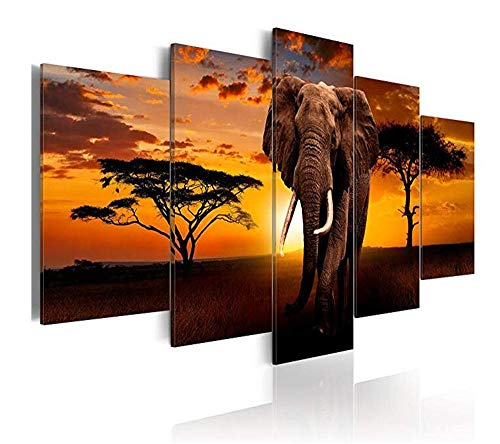 WLHZNB canvas afdrukken 5 stuks Modern fotobehang op druk Wanddecoratie Afrikaanse olifant dier natuurlandschap (maat 2) Geen lijst