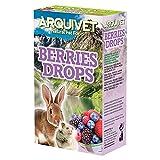 Arquivet Berries Drops frutas del bosque - snack para roedores - 65 g
