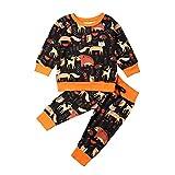Kleinkind Kinder Cartoon Kleidung Baby Junge Herbst Winter Hirsch Langarm Pullover Sweatshirt Tops Leggings Hosen Trainingsanzug Kleidung Set Gr. 80 cm, Orange