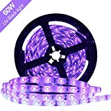 Super Bright 60 Watts UV Black Light LED Strip, 16.4FT/5M 3528 300LEDs 395nm-405nm Waterproof IP65 Blacklight Night Fishing implicitly Party with 12V 5A Power Supply