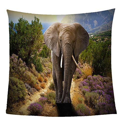 CJSZSD Blanket Super Soft Fleece Throw Blankets Durable Home Decor Animal elephant 3D Fashion Print Perfect For Couch Bed Sofa All Season For Kids Teenager Adults Office Nap(70.8x78.7 inch)