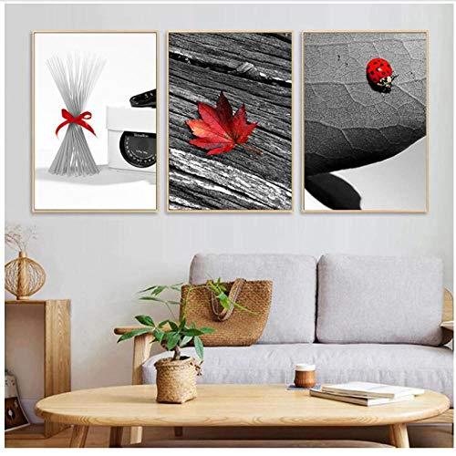 Modern Zwart Wit rood Blad Ladybird Canvas Schilderij Landschap Poster Viool Muurfoto voor Woonkamer Decor Cadeau-50x70cmx3 geen Frame