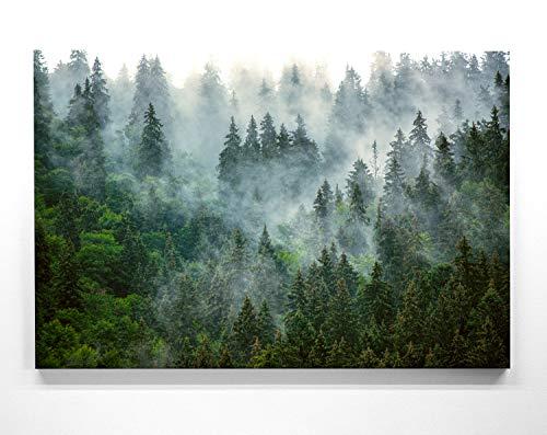 Atemberaubende Waldbilder auf Leinwand. Das Motiv – Nebelstimmung – als 80x80cm großes Wandbild. Perfekt als Hintergrund und Deko für Wohnzimmer & Schlafzimmer. Aufgespannt auf Holzrahmen