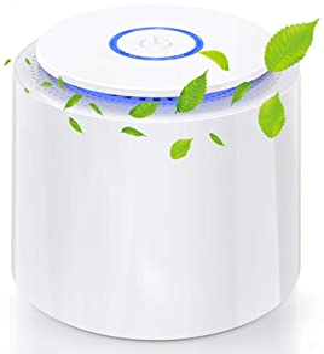 Purificador de Aire Portátil, Mini Filtro de aire USB con Filtro HEPA/Carbón Activado/Función Aromaterapia/2 Modos/Luz Noc...