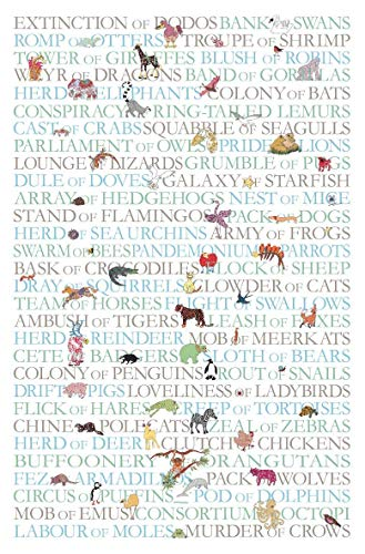 MollyMac • Animal COLLECTIVES Tea Towel Cute Kitchen Home Decor. Animal Groups Dish Cloth. Thank You Gift, Present for Teacher, Birthday, Christmas. UK Made British Design • Animal Collective Nouns