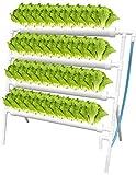 Kacsoo Hydroponic Grow Kit