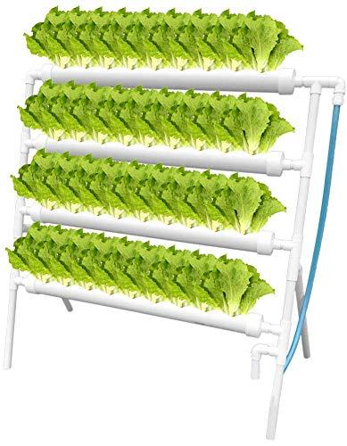 Kacsoo Hydroponic Grow Kit Hydroponisches System Früchte PVC...