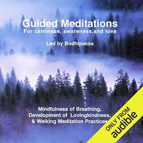 Guided Meditations Titelbild