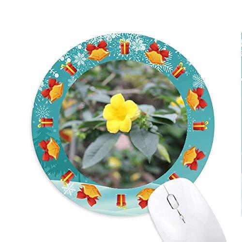 fleur jaune en rotin tapis de souris souris ronds cadeaux de noël