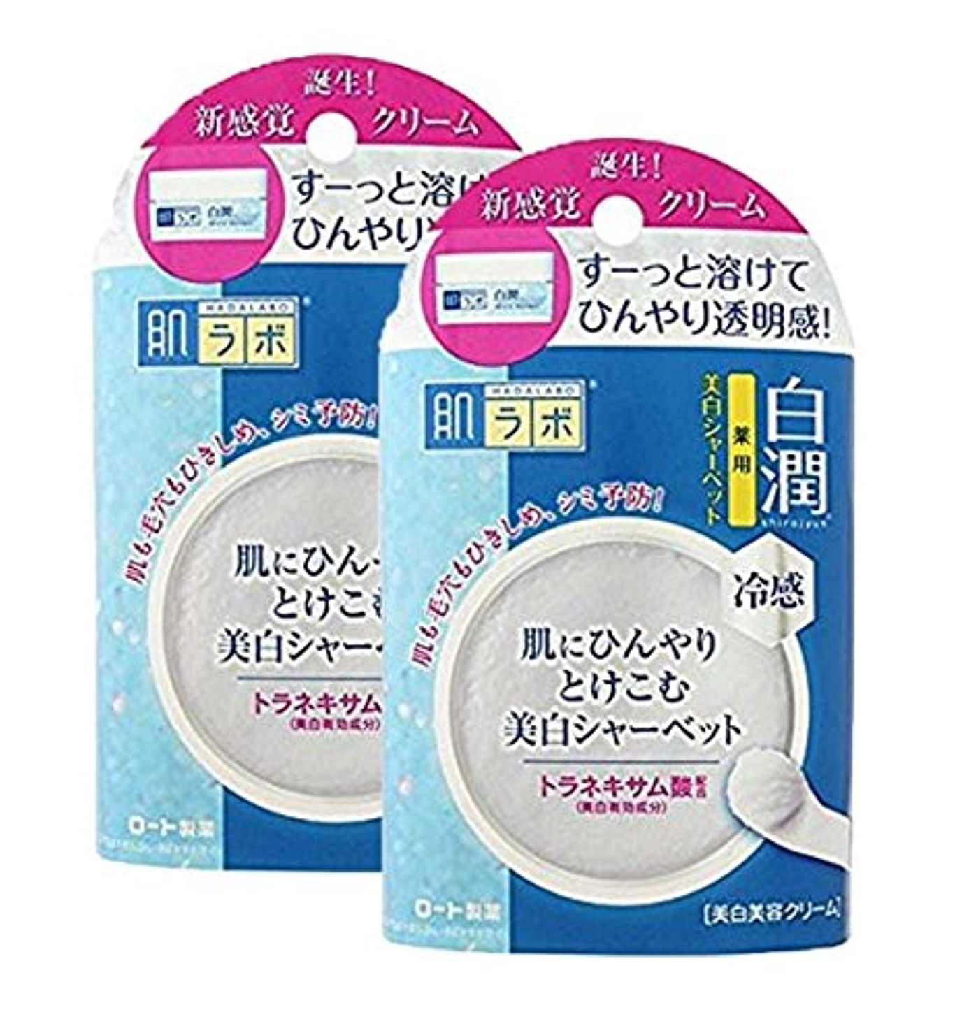 もちろんサリーボーカル肌ラボ 白潤 冷感美白シャーベット30g (医薬部外品)×2