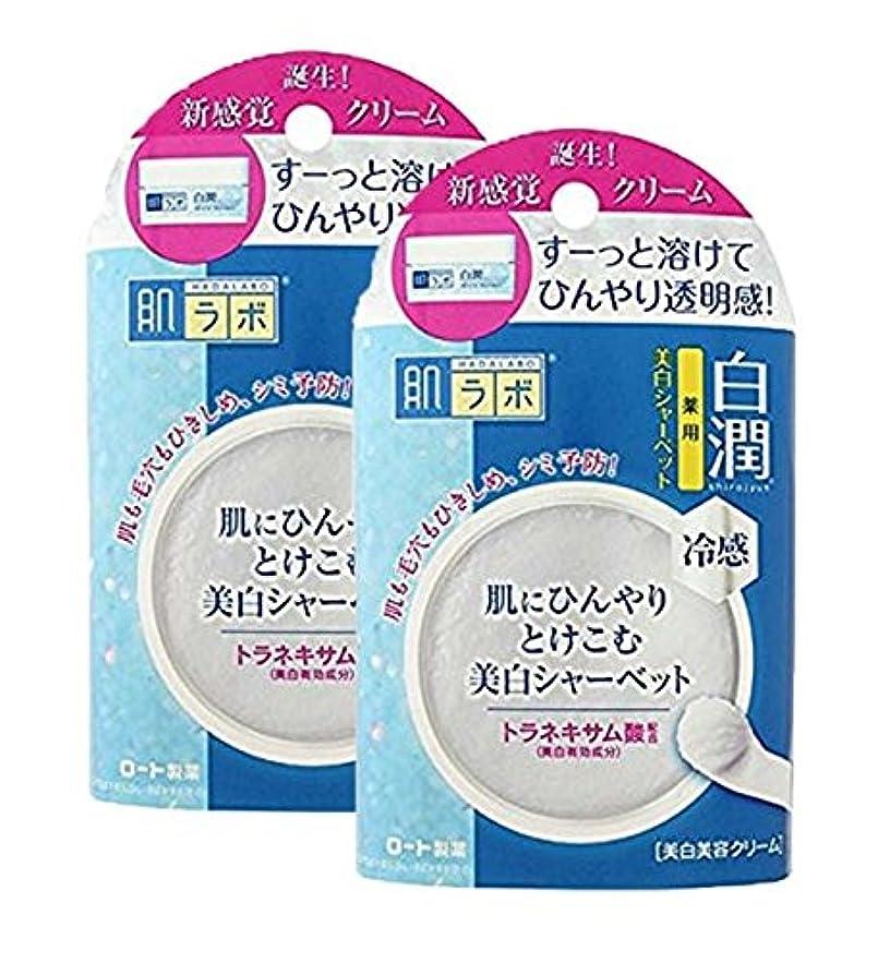 女王性交ペリスコープ肌ラボ 白潤 冷感美白シャーベット30g (医薬部外品)×2