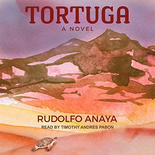 Tortuga audiobook cover art