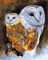 大人のための番号付きキットペイント顔料によるDiyペイント子供のための番号付きキットペイント大人ブラシと明るい色の老人初心者キャンバスアート2つのフクロウ