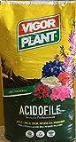vigorplant Blumenerde für Sauerstoffpflanzen 80lt