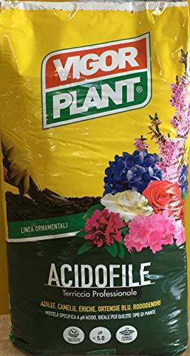 Vigorplant Terriccio Completo per Piante Acidofile 70 lt