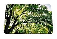 22cmx18cm マウスパッド (木の枝太陽ビーム緑の光) パターンカスタムの マウスパッド