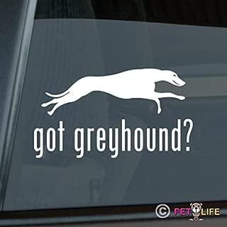 Best running greyhound stickers Reviews