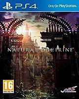 Natural Doctrine (PS4) (輸入版)