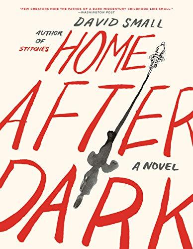 Home After Dark: A Novel