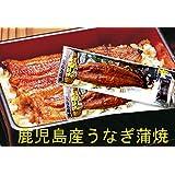 土用丑の日は九州薩摩川内産 たれ付き国産うなぎ蒲焼き真空パック(九州産ウナギかば焼き) 約170g×2尾