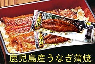 土用丑の日は鰻 九州薩摩川内産 たれ付き国産うなぎ蒲焼き真空パック(九州産ウナギかば焼き) 約170g×2尾
