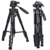 Tairoad Lightweight Tripod Compact Light Tripod with Ball Head and Quick Release Plate