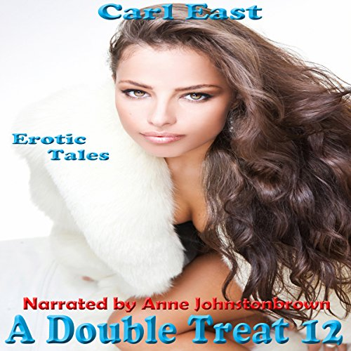 A Double Treat 12 audiobook cover art