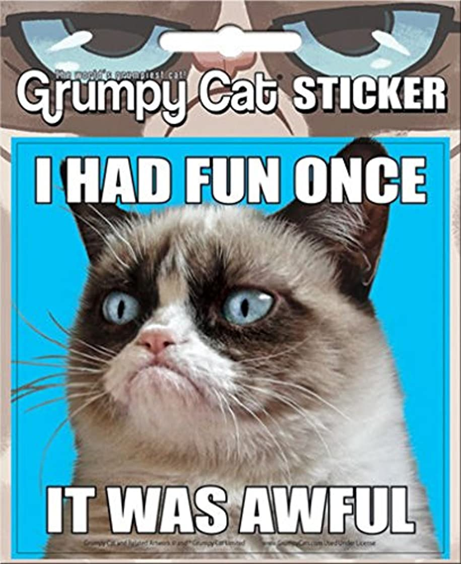 Ata-Boy Grumpy Cat 'I Had Fun Once.' 4
