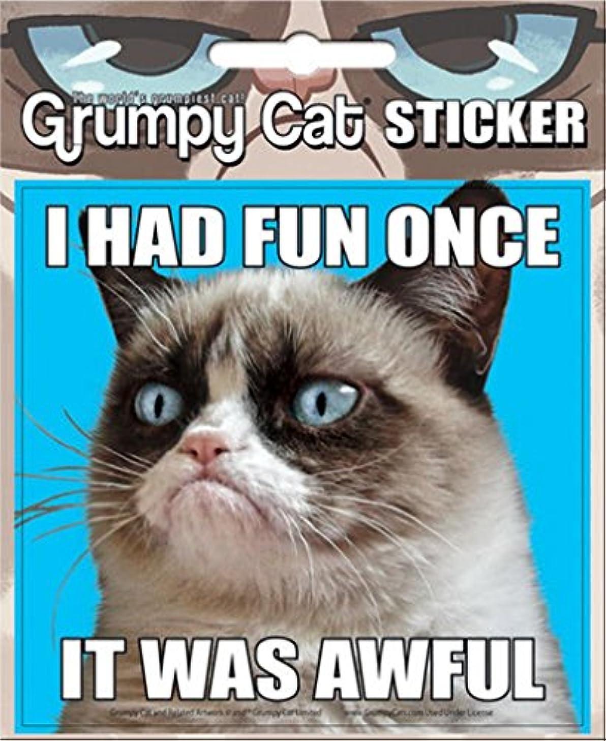 Ata-Boy Grumpy Cat 'I Had Fun Once.' 4