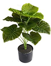 Shopicoo Artificial Palm Tree Plant I 12 Heads I Green Scindapsus Aureus Leaf Home Decor I Indoor Outdoor I Fake Bonsai I Multicolor-Assorted Shapes, Without Vase