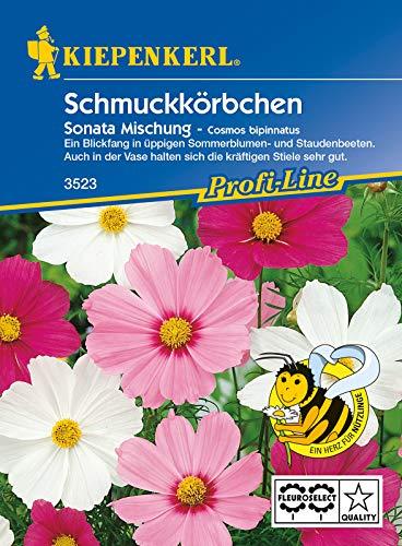 Schmuckkörbchen Cosmos Sonata Mischung, Blickfang in üppigen Sommerblumen- und Staudenbeeten