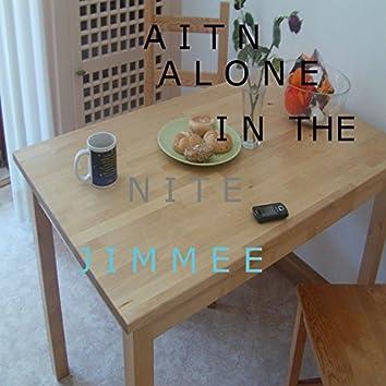 Aitn Alone in the Nite