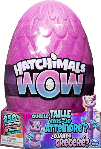 Hatchimals 6046989 EGG HatchiWow GML, Multicolor, Modelos Surtidos