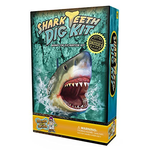 Discover with Dr. Cool Shark Tooth Dig Kit - Excavate 3 Real Shark Teeth Specimens!