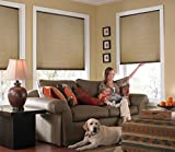 Windowsandgarden Custom Cordless Single Cell Shades, 24W x 36H, Antique Linen, Light Filtering 21-72 Inches Wide