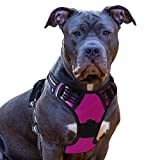 Eagloo Dog Harness No Pull, Walking Pet Harness with 2 Metal Rings