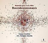 Rosenkranzsonate No. 5 in A Major, C 94 'Child Jesus in the Temple': II. Allemande