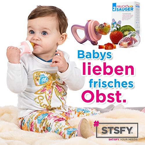 2 Fruchtsauger für Baby & Kleinkind + 6 Silikon-Sauger in 3 Größen – BPA-frei – Schnuller Beißring für Obst Gemüse Brei Beikost - 6