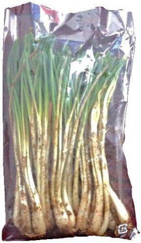 期間限定 沖縄県産 島らっきょう 約200g 小ぶりで独特の香りと辛みがある沖縄産のラッキョウ おつまみに