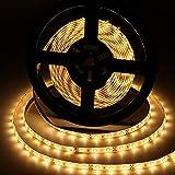 Aigostar - Tira LED de 5 metros, luz cálida 3000K, tira LED flexible, IP65 impermeable. Luces LED...