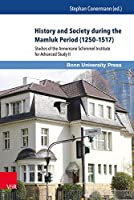 History and Society during the Mamluk Period (1250-1517): Studies of the Annemarie Schimmel Institute for Advanced Study II (Mamluk Studies)